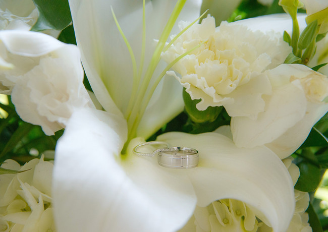 Rings & Petals