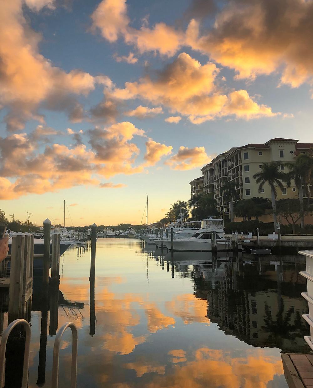 Dive Bar, Jupiter, Sunset, Marina, Sushi, Dog-Friendly, Boating, Bring Fido
