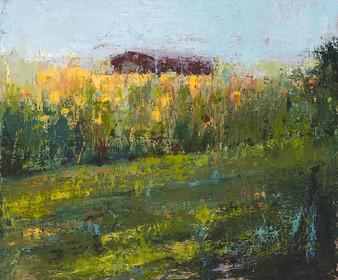Barn with Sunflower Field