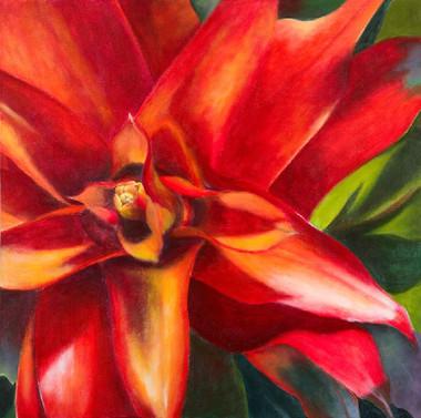 Red Botanical