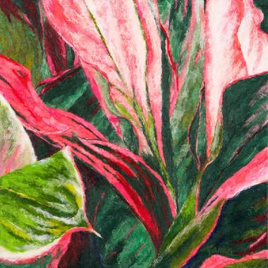 Botanical Two