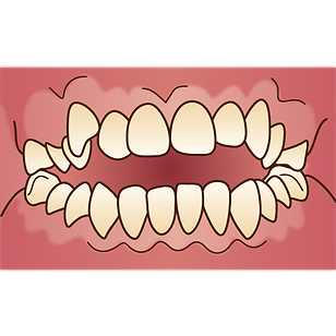 orthodontics032.png