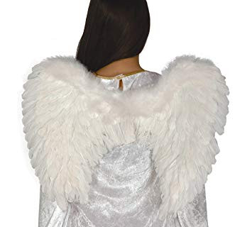 Ailes ange blanches