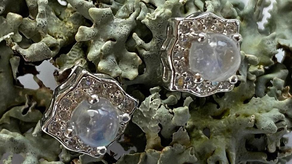 Moonstone Square Silver Studs