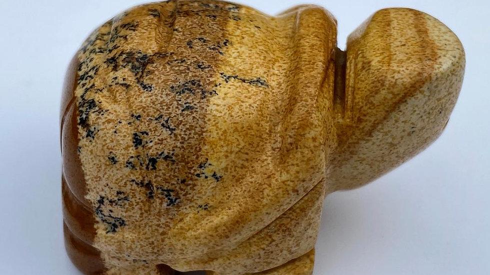 Picture Stone Jasper Turtle