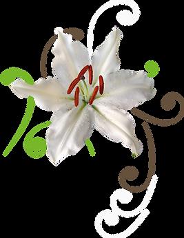 Logo_avec_arabesque.png