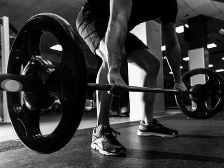 Barritas de proteína: Óptimo, rápido y cómodo