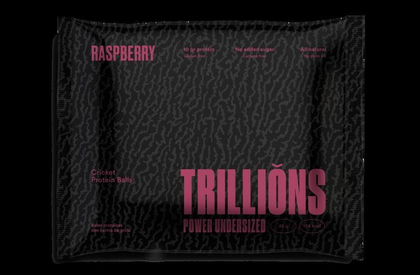 Cricket Protein Balls Raspberry