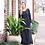 Thumbnail: Scalloped Maxi Dress - Black