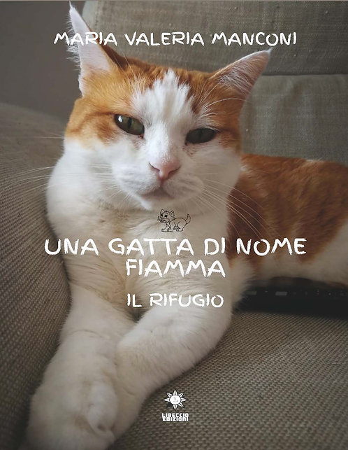 Una gatta di nome Fiamma Il rifugio