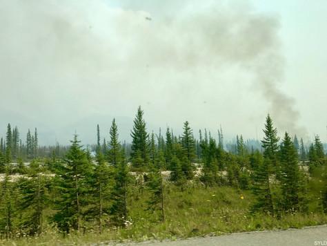 Kanada #16 | Hot Springs und Wildfire auf dem Weg von Golden >> Canmore
