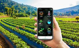 Smart-Farm.jpg