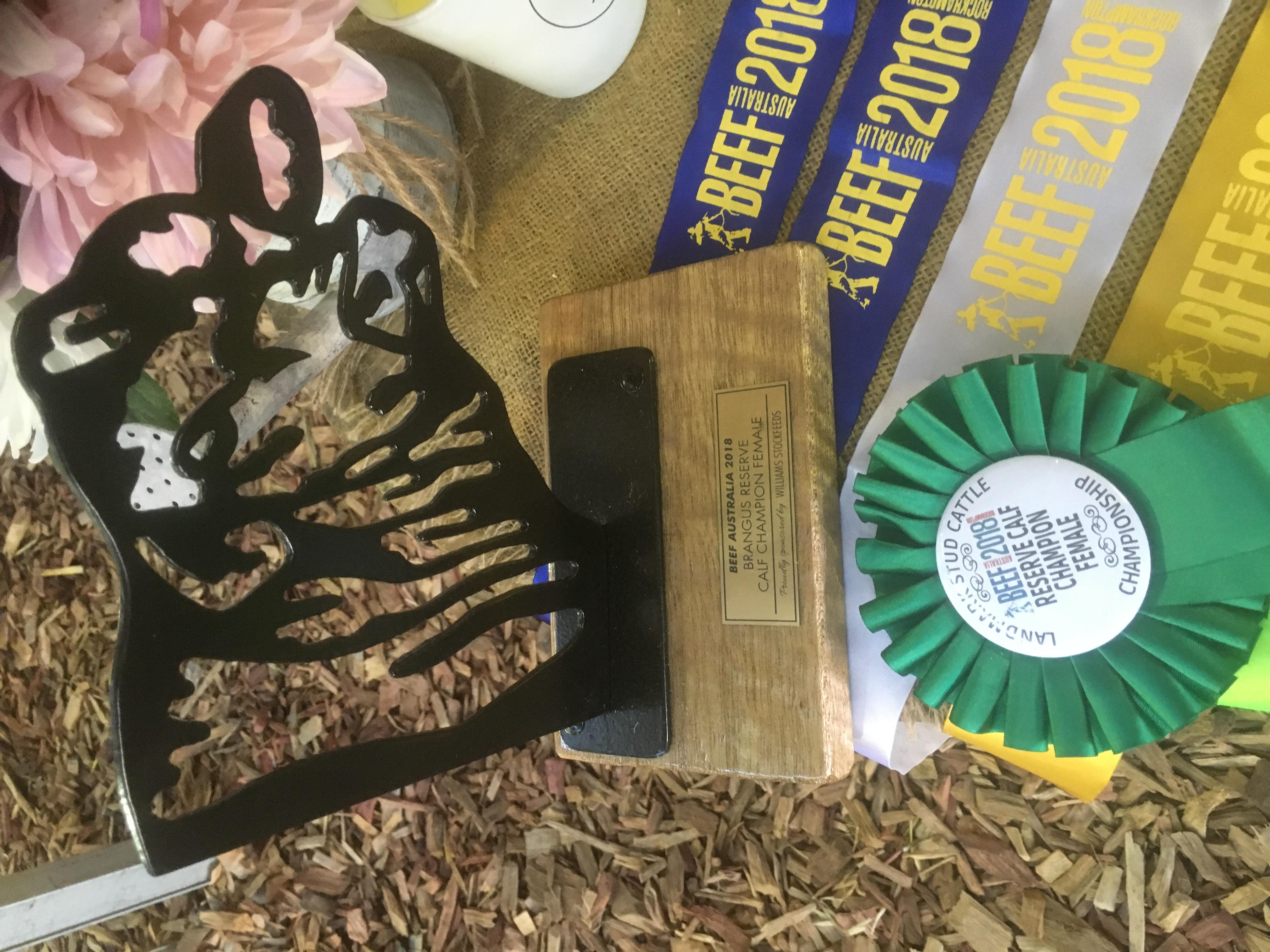 Forest Hills Brangus Award
