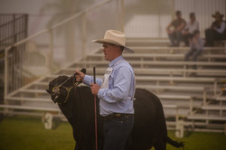 Michael Silvester at Beef Week