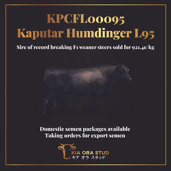 KPCFL00095 Kaputar Humdinger L95 (AI) (ET) - Commercial Semen Packages