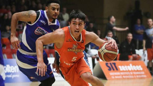 Saints, Sharks loom large in NBL