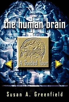 the_human_brain.png