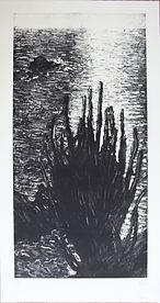 50 SIN TITULO, 30-48, 98 X 49 CM. 2009 D