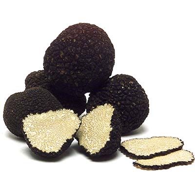 Black Truffle Tuber