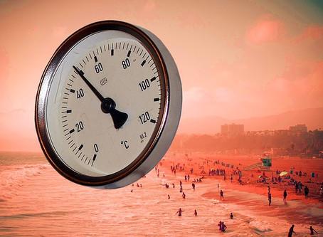 Wege um dem Klimawandel entgegen zu wirken