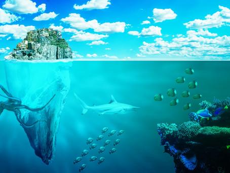 Certains types d'animaux marins de profondeur moins connus et leurs caractéristiques