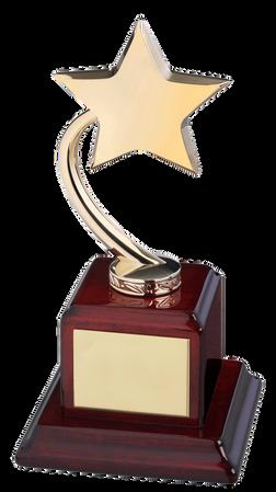 Star Trophy Achievements UK