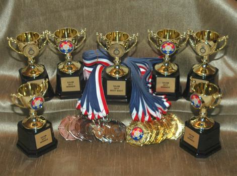Charity Shooting Bespoke Glass Awards Ac