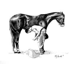 Man shoeing horse