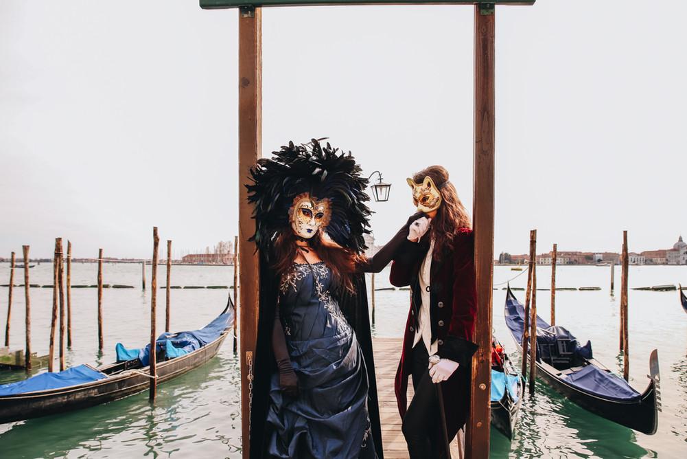 Cats of Venice