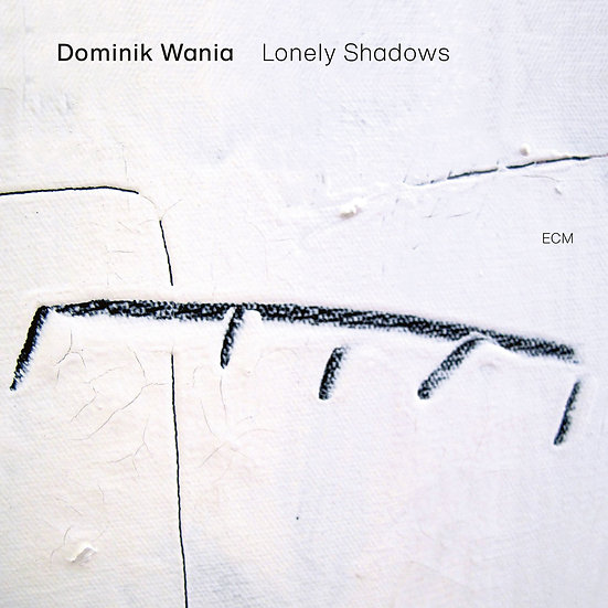 多明尼克.瓦尼亞:寂影 Dominik Wania: Lonely Shadows (Vinyl LP) 【ECM】