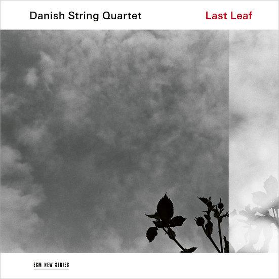 丹麥弦樂四重奏 Danish String Quartet: Last Leaf (CD) 【ECM】