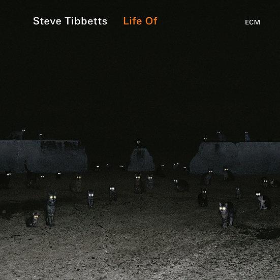 史蒂芬.泰伯特:某某的生活 Steve Tibbetts: Life Of (CD) 【ECM】
