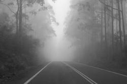 misty roads wix