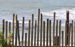 beach fence - wix