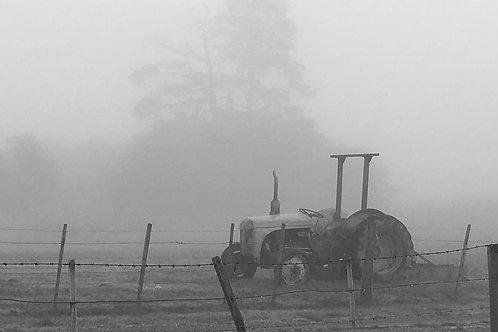 Misty Yarra Valley
