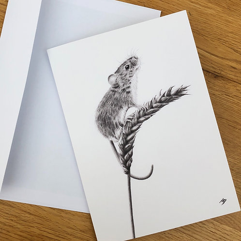 'Curious Mouse' A5 greeting card