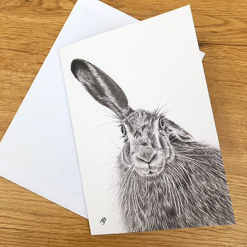 'Grey Hare' A5 greeting card