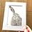 Thumbnail: Grey Hare