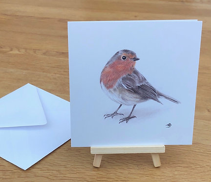 Robin Christmas cards - pack of 5
