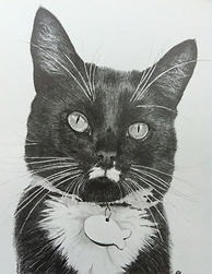 Casper portrait