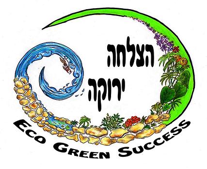 Logo Amir.png
