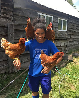 Boys Chickens 1 2019.jpg
