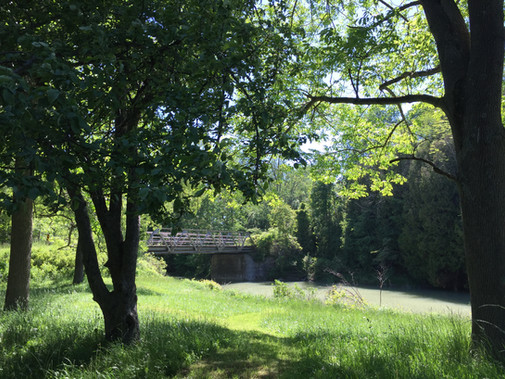idylwild cottage on the eighteen mile river