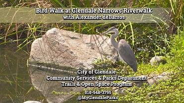 Bird Walk at the Riverwalk - Thumbnail.j