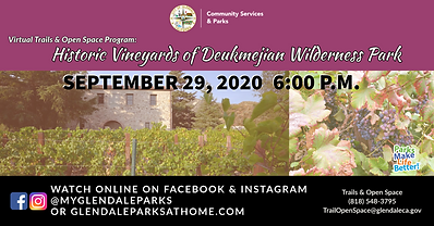 FB Historic Vineyards of DWP Copy (1).pn
