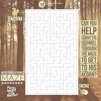 MGP maze (1).jpg