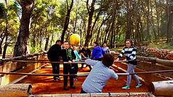 Living table football