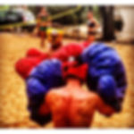 Giant boxing Hvar day trip