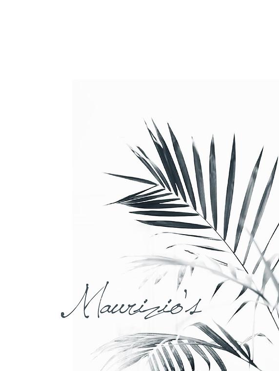 logo-palmleafimage.png