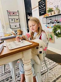 stanley with homeschooling.jpg